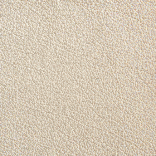 Neutral Leather